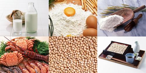 治療食-アレルギー対応食品